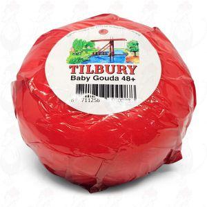 Baby Formaggio Gouda | Qualità Premium | 380 grammi
