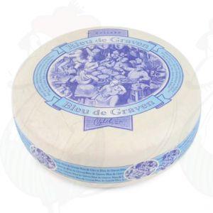 Blue de Graven - formaggio olandese a muffa blu - formaggio vegetariano | Qualità Premium | Formaggio intero 3,5 chilo