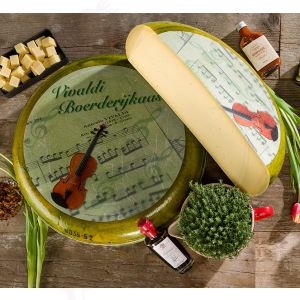 Vivaldi cheese